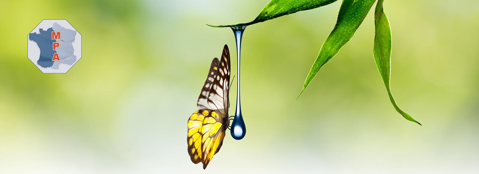 Maintenance d'appareils de traitement d'eau